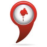Piec na grillu kurczak ikona Zdjęcie Stock