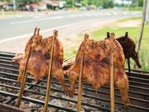Piec na grillu kurczak na grillu Fotografia Royalty Free