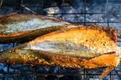 Piec na grillu makrela Zdjęcie Royalty Free
