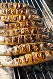 Piec na grillu makrele na grillu Zdjęcie Royalty Free