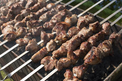 Piec na grillu marynowanego mięso na brązowniku Zdjęcie Royalty Free