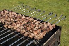 Piec na grillu marynowanego mięso na brązowniku Obraz Stock