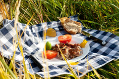 piec na grillu mięso składa warzywa Obraz Royalty Free