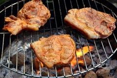 piec na grillu mięso Obraz Stock