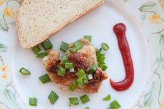 Piec na grillu mięsa i cebul skhlekbom na talerzu Fotografia Royalty Free