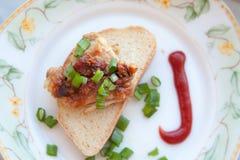 Piec na grillu mięsa i cebul skhlekbom na talerzu Zdjęcia Stock