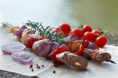 Piec na grillu mięsa i warzyw kebabs Zdjęcia Royalty Free