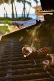 Piec na grillu ośmiornica podczas Hawajskiego zmierzchu Fotografia Stock