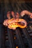Piec na grillu ośmiornica podczas Hawajskiego zmierzchu Obraz Royalty Free
