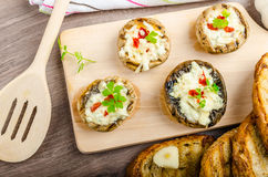 Piec na grillu pieczarka faszerujący ser i chili fotografia royalty free