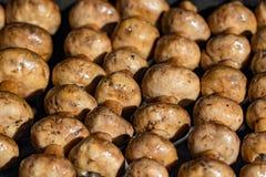 Piec na grillu pieczarki na skewers gotujących w brązowniku, zakończenie Obraz Stock