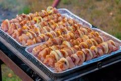 Piec na grillu pieczonego mięsnej rolki skewer BBQ cebulkową jagnięcą roladę Zdjęcie Royalty Free