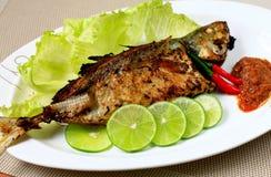 Piec na grillu ryba Obraz Royalty Free