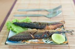 Piec na grillu ryba Zdjęcie Royalty Free