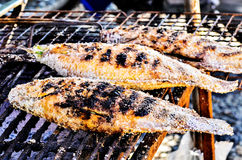 Piec na grillu ryba Zdjęcia Stock