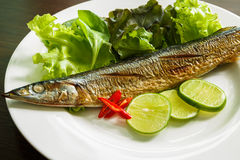 Piec na grillu ryba Obrazy Royalty Free