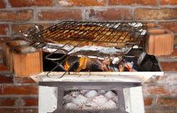 Piec na grillu ryba węgiel Zdjęcie Royalty Free