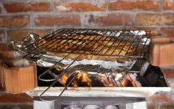 Piec na grillu ryba węgiel Zdjęcia Stock