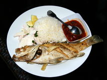 Piec na grillu ryba z tamarynda kumberlandem Gotowanych ryż i palmowego serca sałatkowy garnirunek zdjęcia royalty free