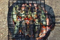 Piec na grillu rybi, tajlandzki kucharstwo Piec na grillu jedzenie stylu pięcia żerdzi ryba na kratownicie na węgiel drzewny kuch fotografia stock