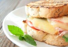 Piec na grillu Serowa kanapka Fotografia Stock