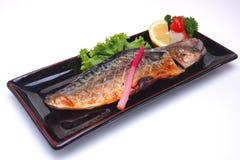 Piec na grillu Skumbriowy Saba Shioyaki na białym tle Fotografia Royalty Free