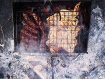 Piec na grillu, Sma??cy ?wie?ego mi?so, kurczaka grill, kie?basa, Kebab, hamburger, warzywa, BBQ, grill, owoce morza grilled obrazy royalty free