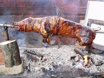 piec na grillu target4422_1_ świni Fotografia Royalty Free