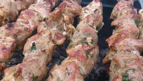 Piec na grillu wieprzowina z ziele Obrazy Royalty Free