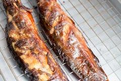 Piec na grillu wodny sum na grille lokalnych nierdzewnych naczyniach przy ulicznym rynkiem jedzenia tajlandzki stylowy zdjęcia royalty free