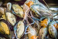 Piec na grillu zieleni mussels na węgiel drzewny kuchence przy nocy normą i garnele zdjęcie stock