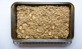 piec oatmeal Zdjęcia Stock