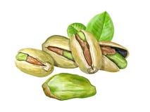Piec pistacjowe dokrętki obrazy stock