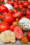 Piec pomidory, czosnek i ziele, fotografia royalty free