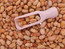 Piec soje i drewniana łyżka Obrazy Royalty Free