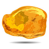 A piece of amber with a fixed prehistoric fly insi Stock Photo