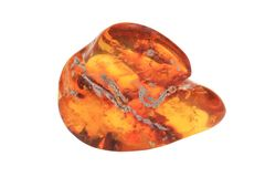 Piece of the amber royalty free stock photos