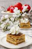 Piece of apple cake with whipped cream Royalty Free Stock Photo