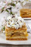 Piece of apple cake with whipped cream Stock Image