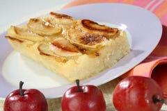 Piece of apple pie Stock Images