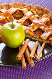 Piece of apple tart with cinnamon Royalty Free Stock Photography