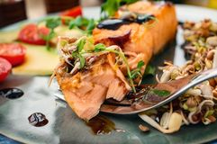 A piece of baked red fish with a side dish of sprouts and avocado salad. Macrobiotic food concept. Healthy food.  royalty free stock photography