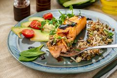 A piece of baked red fish with a side dish of sprouts and avocado salad. Macrobiotic food concept. Healthy food.  stock photography