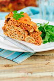 A Piece of Bolognese Pasta Bake Stock Photography