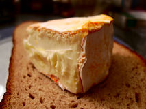 The piece of brie cheese Royalty Free Stock Photography