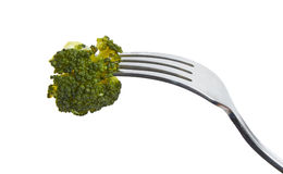 Piece of broccoli on a fork Royalty Free Stock Images