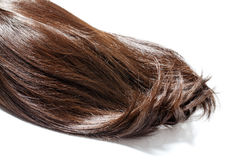 Brown hair piece. Piece of brown hair on white isolated background stock images