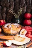 Piece of cake with apples on a saucer. Wooden table. Rustic style Stock Image