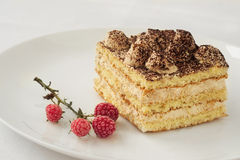 Piece of cake with cocoa and frozen raspberries Stock Photo
