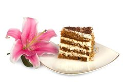 Piece of cake on a plate Royalty Free Stock Images